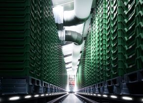 Vertical-farming-breeding-facility.jpg