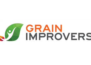 Grain Improvers